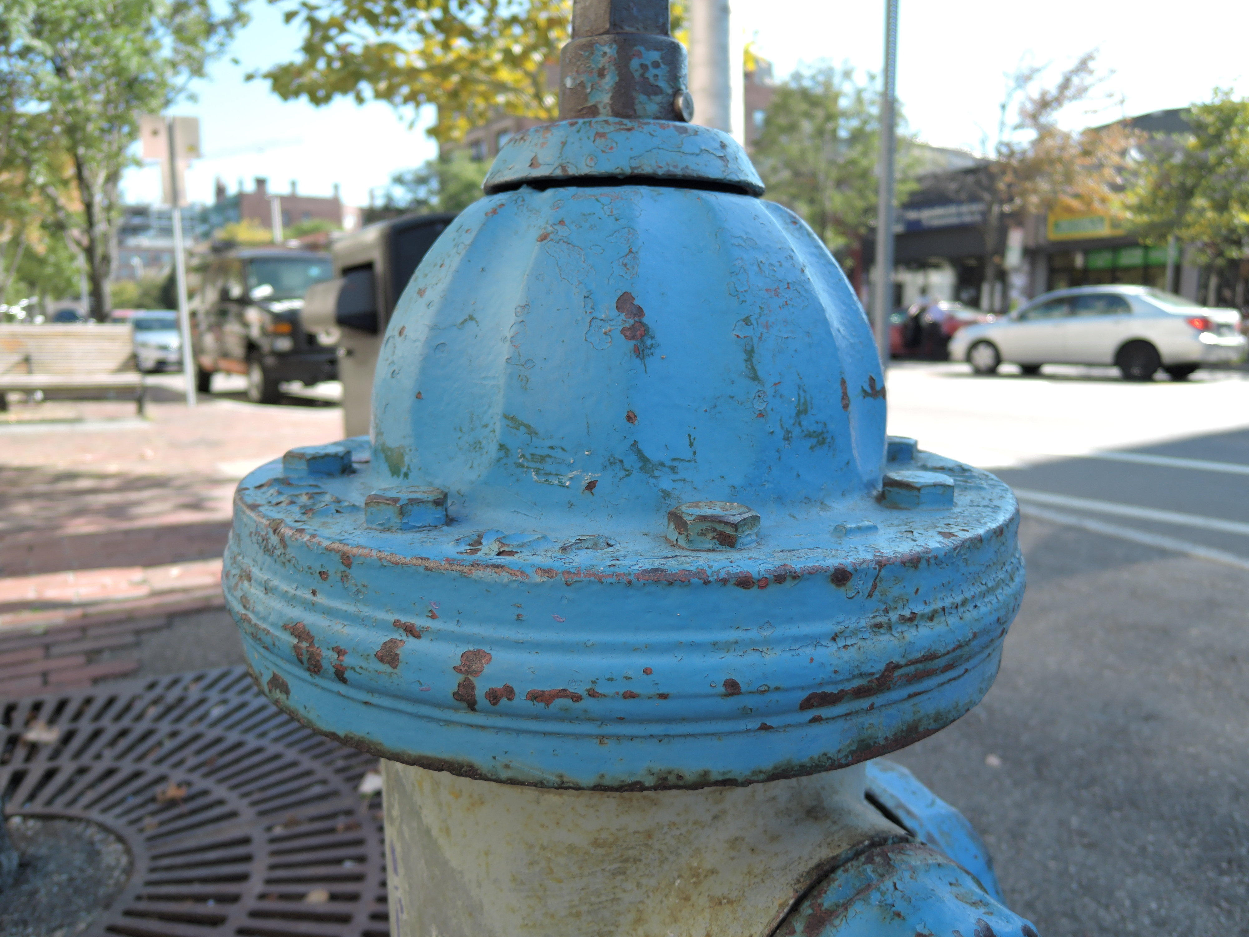 A sample photo of a fire hydrant taken by the Nikon Coolpix P340.