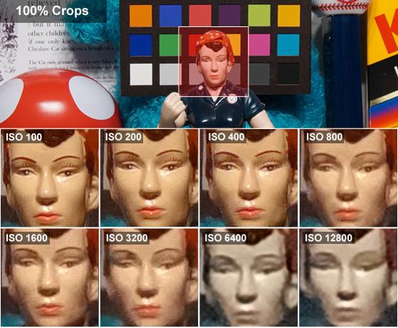 DCI-ROSIE-CROPS-SONY_DSC-WX80.jpg
