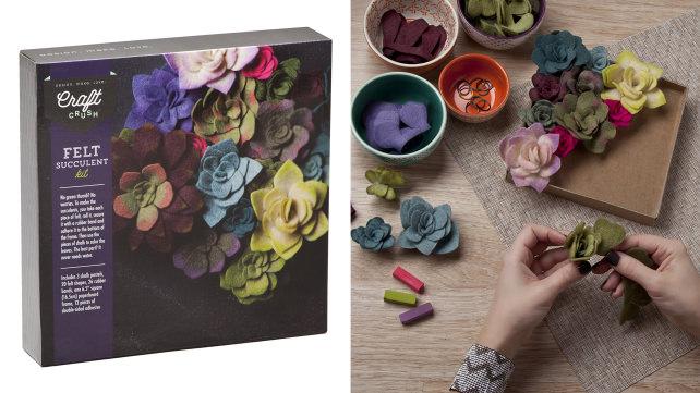 Craft Crush Felt Succulent Kit