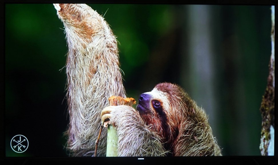 Samsung-KS8000-4K-Sloth