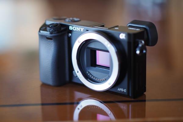 SONY-A6000-FI-SENSOR.jpg
