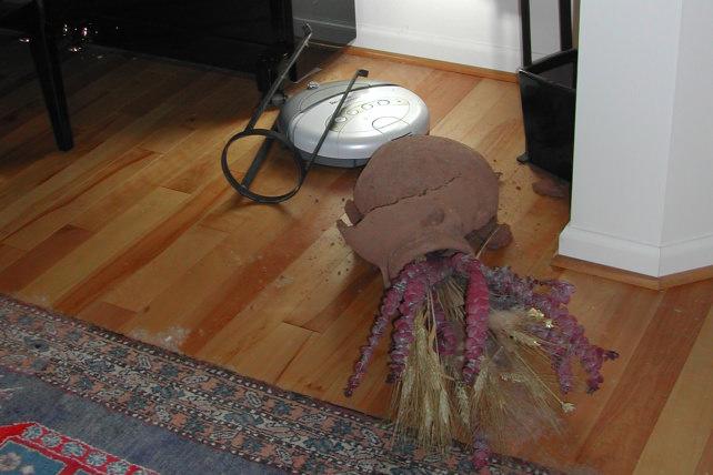 Robot Vacuum Fail