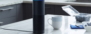 Amazon echo alexa set up lead