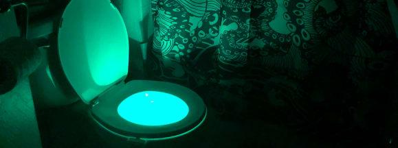 Vintar toilet light