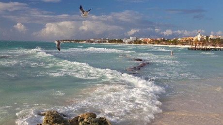 Western-Caribbean-460.jpg