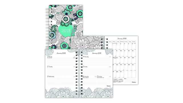 Blueline 2018 DoodlePlan Color-In Planner