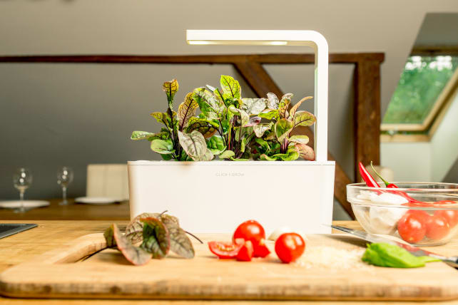 Click and Grow Smart Planter