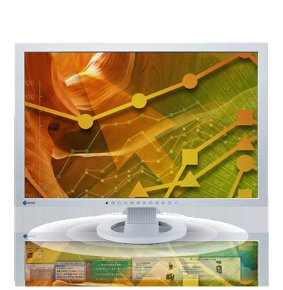 Product Image - Eizo FlexScan S2402W