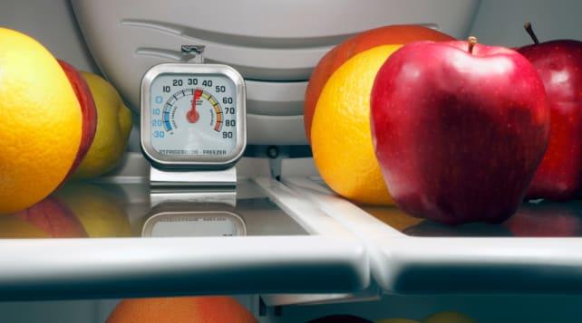 Refrigerator-thermometer-temperature-settings
